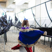 A visit to the Viking Ship Museum in Roskilde, Denmark is perfect for toddlers.