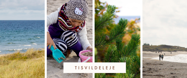 The Toddler's Guide to the Danish Riviera , with tips, tricks and advice on where to take your little ones. There is something for both parents and children in all these seaside towns, located less than an hour away from Copenhagen.