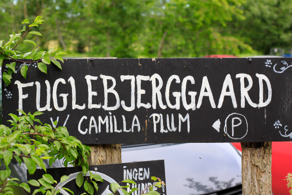 Visiting the Fuglebjerggaard Farm, an easy day trip for families and children outside of Copenhagen for fresh produce and fresh air, run by Camilla Plum, Denmark's leading chef in organic, nordic cuisine.