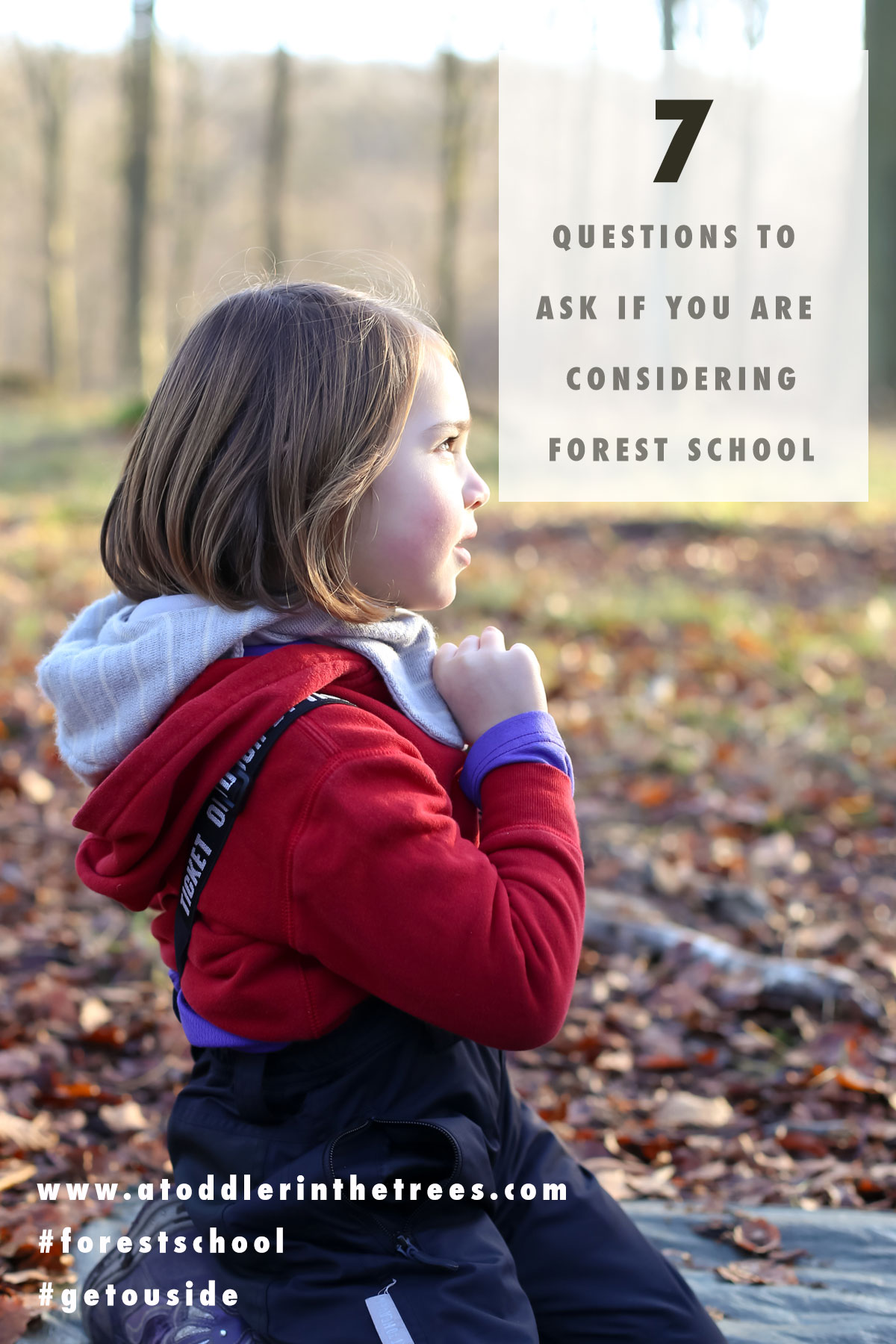 Seven key questions any parent should ask themselves when considering forest school or forest kindergarten for their children's education.
