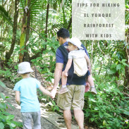 Tips and tricks of hiking the El Yunque Rainforest National Park with children.