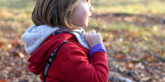 7 Questions to Ask When Considering Forest School