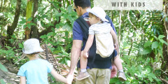 8 Tips for Hiking with Kids in El Yunque Rainforest